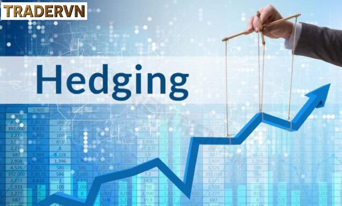 Hedging là gì? Các chiến lược Hedging hiệu quả trong forex