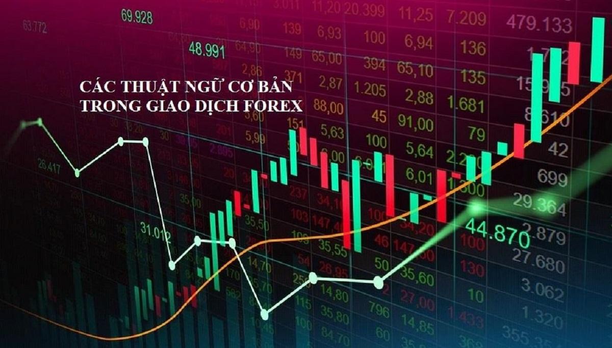 Các thuật ngữ trong forex quan trọng trader cần biết