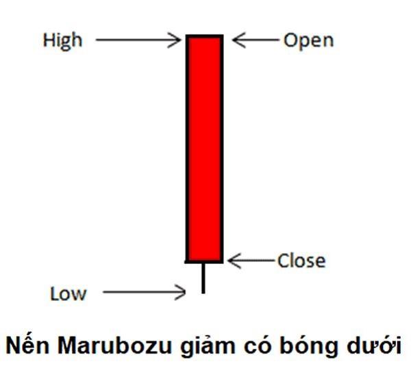 nen Marubozu giam co bong duoi